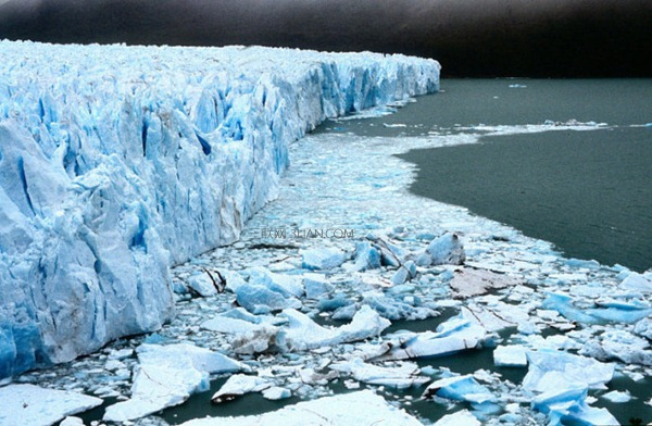 世界上最大的冰川公园面积达1414平方千米
